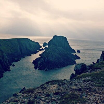 Wildlife and wilderness in Donegal