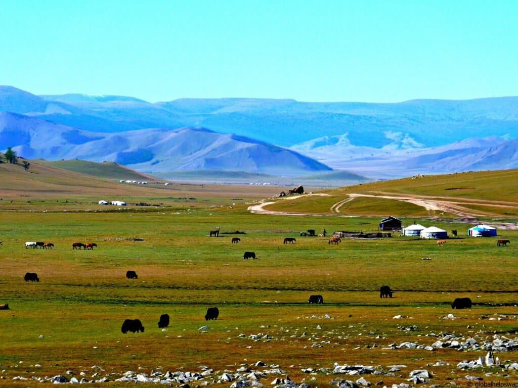 Magnificent Mongolia