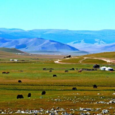 Magnificent Mongolia