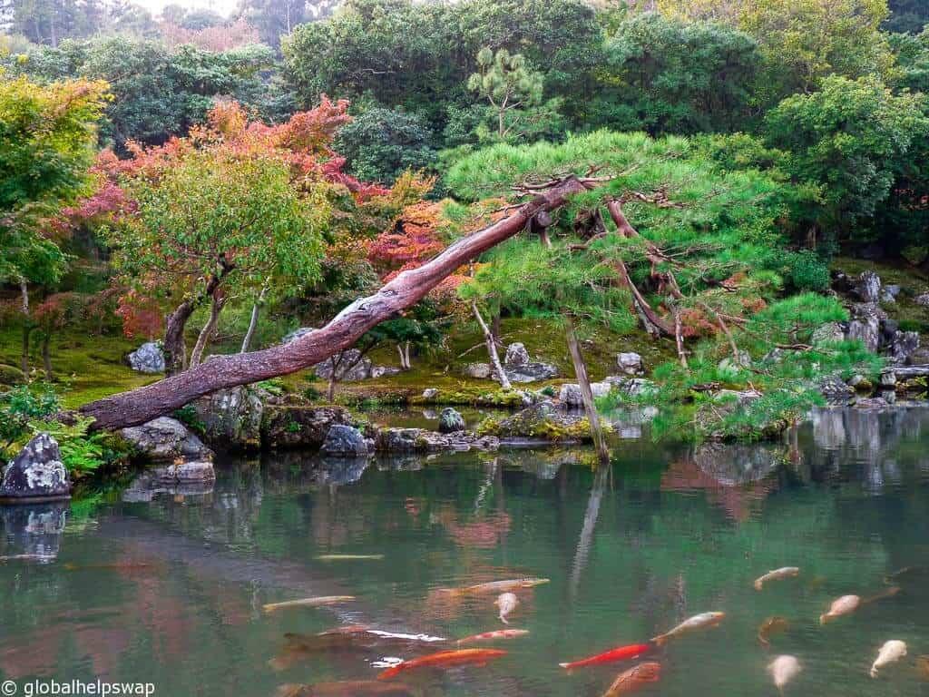 Things To Do In Kyoto Japan Globalhelpswap