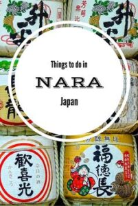 Things to do in Nara Japan