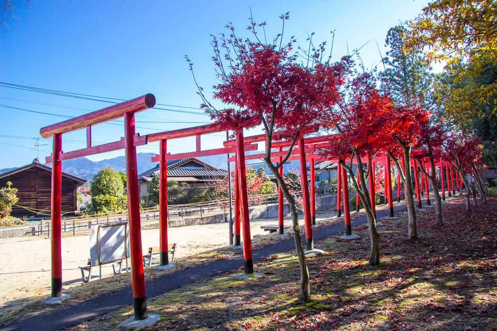 Tori gates along the Nakasendo Trail in Nakatsugawa