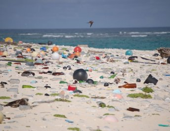 "We're saying ""no"" to plastic for Making Holidays Greener"