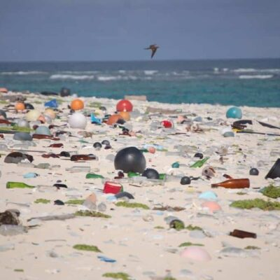 Beach full of plastic