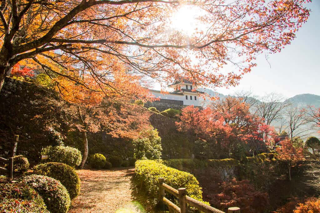 the grounds of Gujo Hachiman Castle