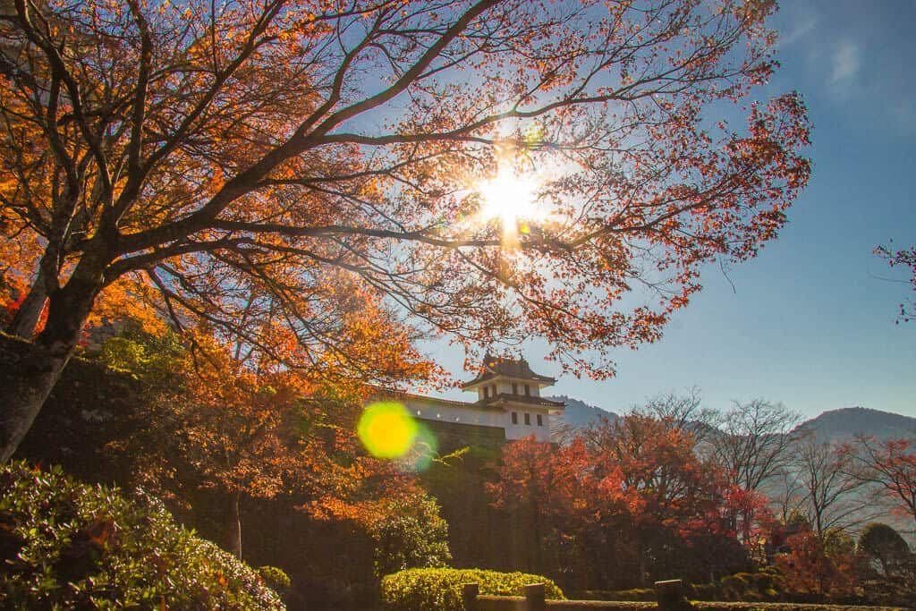 Autumn in Japan at Gujo Hachiman Castle