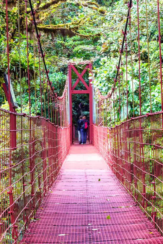 Hanging Bridges, Skywalk Monteverde