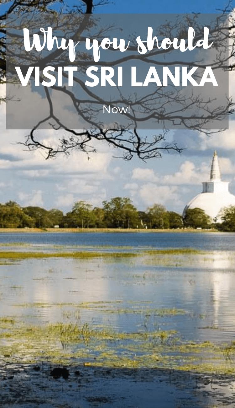 Is Sri Lanka safe to visit? Why you should visit Sri Lanka now.