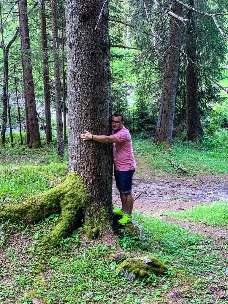 Tree Hugging in Val di Rabbi, Trentino