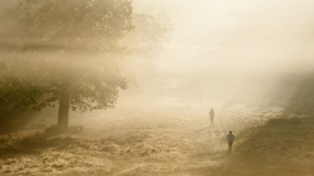 Joggers in Richmond Park London on a foggy day