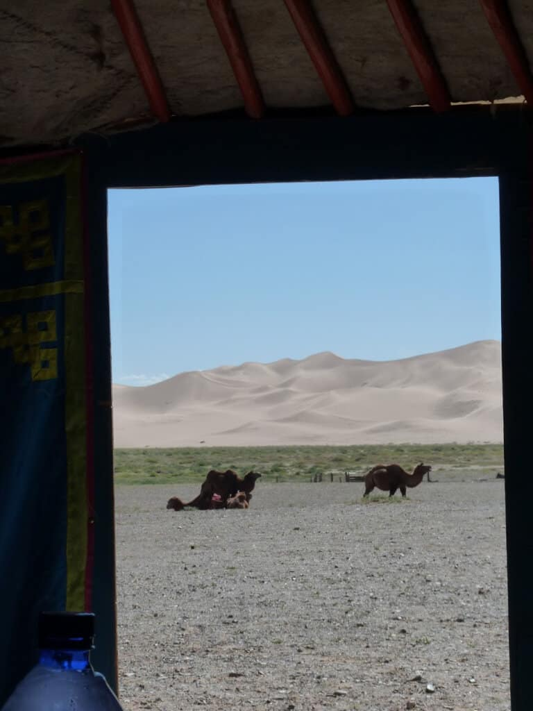 The view from our Ger (Yurt)